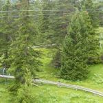 Alpine Coaster Imst - 059