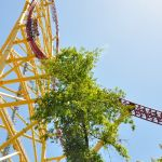 Cedar Point - Top Thrill Dragster - 046
